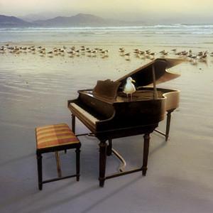 卡农-(情感100%)-钢琴谱