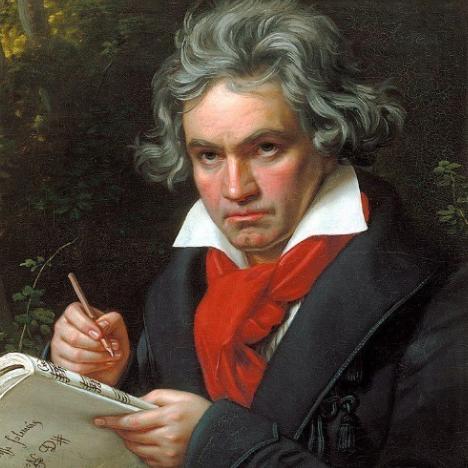 献给爱丽丝 完整指法 C调 初学者优选 简化版 致爱丽丝-钢琴谱