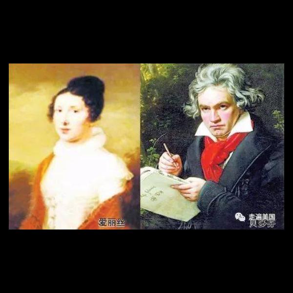 献给爱丽丝-带指法-钢琴谱