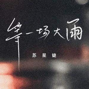 苏星婕-等一场大雨C调简易钢琴版(原版和弦)