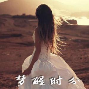 梦醒时分 C调简易版  陈淑桦-钢琴谱