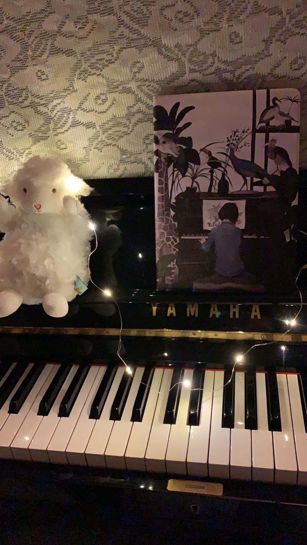 燕子姐姐了啦的钢琴谱