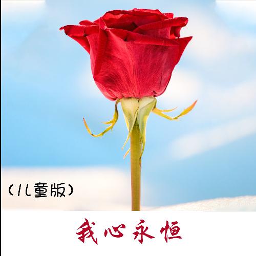 My Heart Will Go On钢琴简谱 数字双手