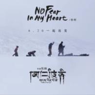 No fear in my heart 朴树