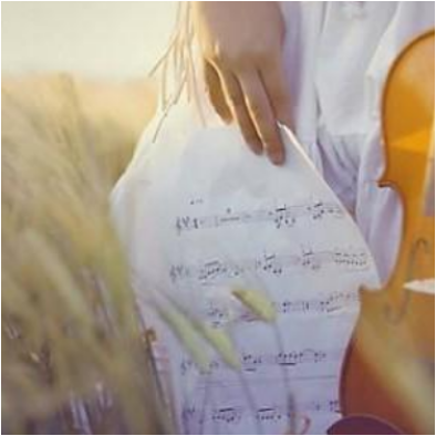 《D大调卡农四手联弹》-约翰·帕赫贝尔(Canon原版)-钢琴谱