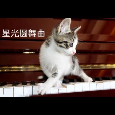 布雷纳德 星光圆舞曲-钢琴谱
