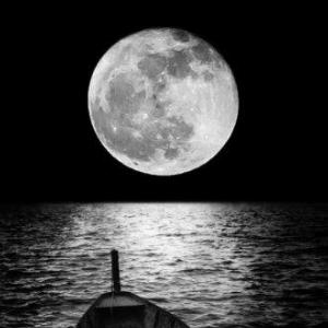 《白月光与朱砂痣》精简独奏版-钢琴谱