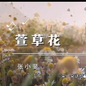 萱草花钢琴简谱 数字双手 李聪