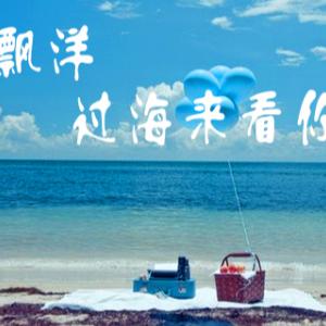 漂洋过海来看你钢琴简谱 数字双手 李宗盛