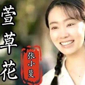 C调-萱草花-张小斐〖简易动听〗-钢琴谱