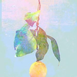 Lemon-米律玄师-钢琴谱