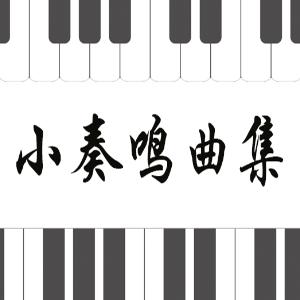 49.舒伯特-即兴曲Op.142 No.3 B大调-钢琴谱