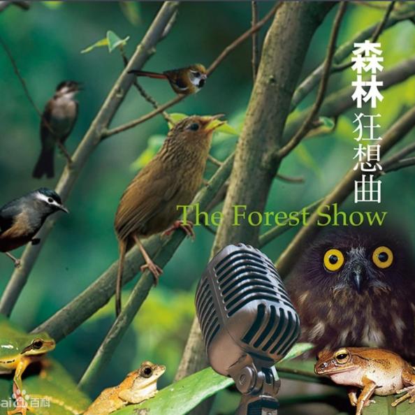 森林狂想曲 唯美原声版-钢琴谱