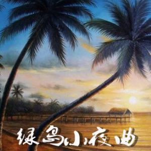 绿岛小夜曲 友谊之光 C调简易版-钢琴谱