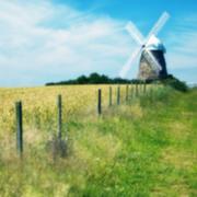 Windy Hill-钢琴谱
