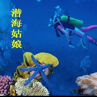 潜海姑娘(指弹谱)